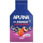 Apurna Liquid Energy Gel Difficult Passage Guarana Black Currant - 35g