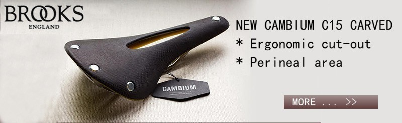 New Brooks Cambium
